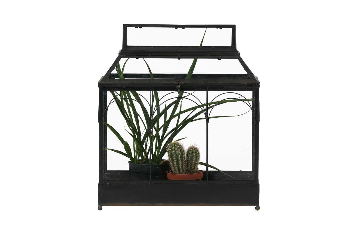 Szafka na rośliny